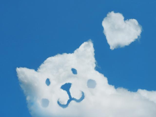 1316_雲のイヌ.jpg