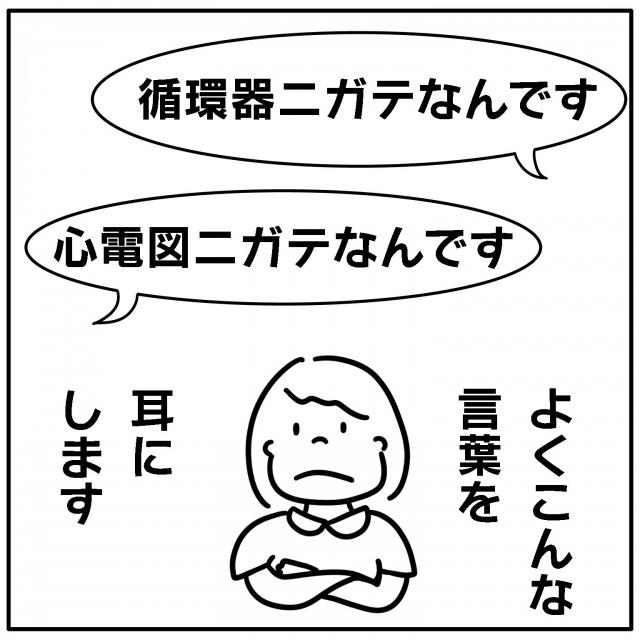 3008_1.jpg