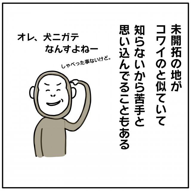 3008_4.jpg