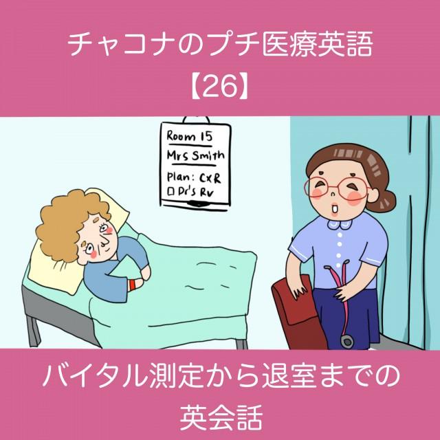 3177_TOP.jpg